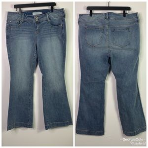 TORRID Medium Wash Flare Jeans Womens 18 Short
